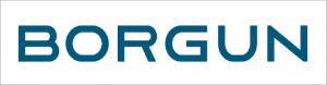 borgun-logo